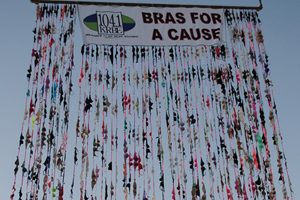bra-wall-of-hope-krbe-2016